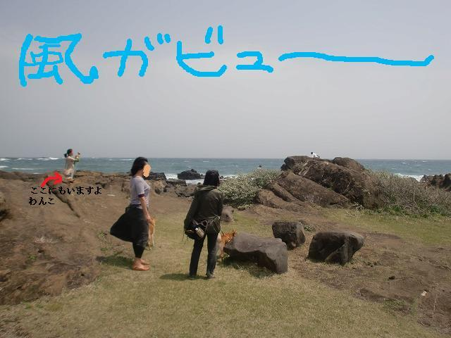 波荒い野島埼