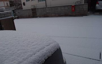 2013-01-28-01.jpg