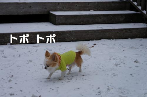 2_convert_20120212191055.jpg