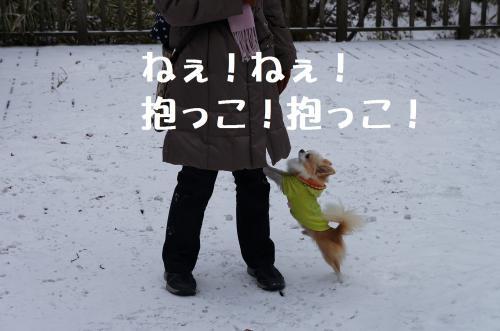 3_convert_20120212191115.jpg