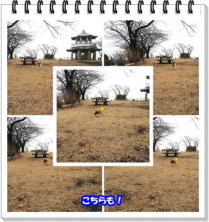 1404ブログNo5