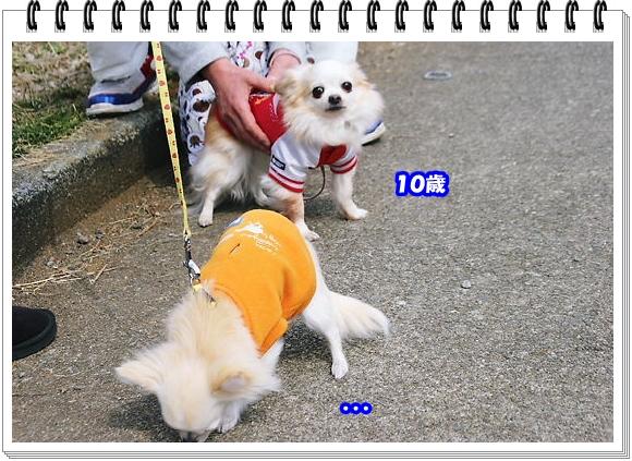 1428ブログNo8