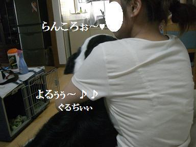 2011年8月29日