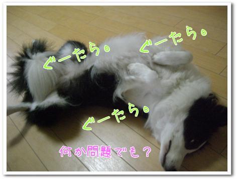 C8qeM.jpg