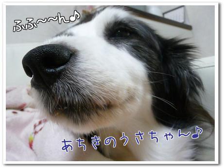 F4tuC.jpg