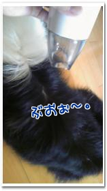 NCNdo.jpg