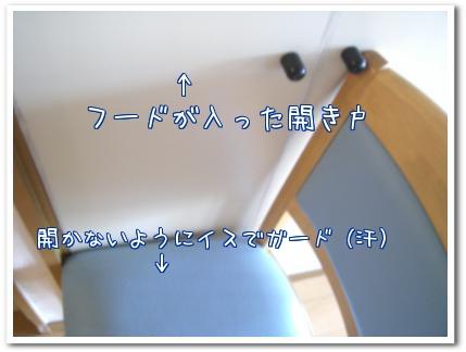 SS2Db.jpg