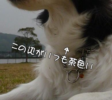 lRB_Y.jpg