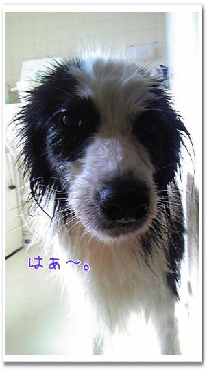 rn4O9_20111009161051.jpg