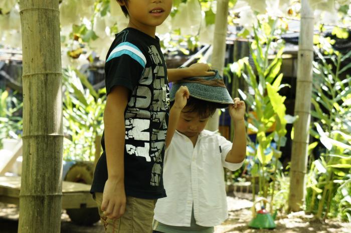 河野ぶどう園201105