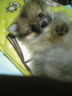 2008-03-16_22-08_0001.jpg
