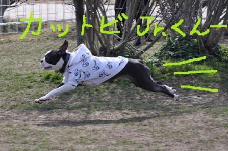 カッ飛びJr.くん