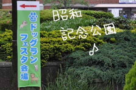 ①昭和記念公園