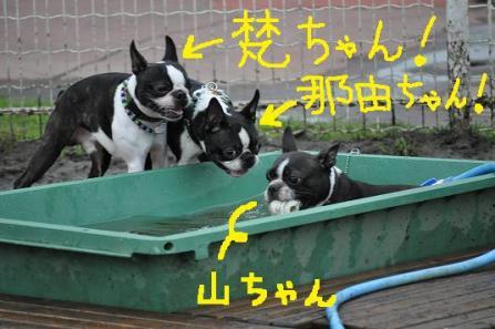 6.梵・那由ちゃん