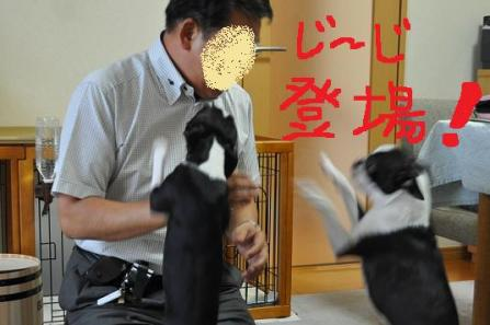 5.じーじ