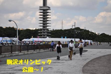 006駒沢オリンピック公園