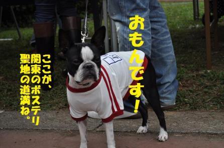 おもんちゃん034