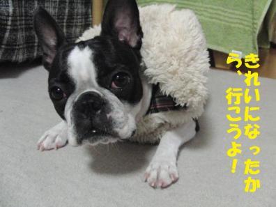すたんばいOK053