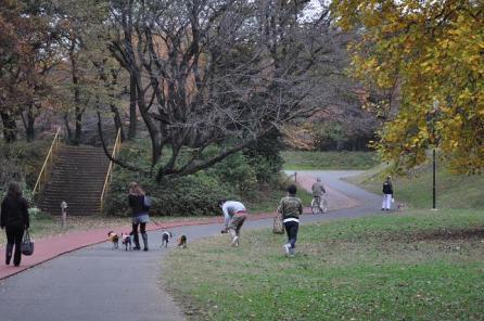 ないを~164広い公園