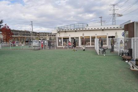 1.DOG GARDEN RESORT鶴ヶ島ラン