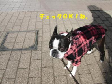 ぱとろーるきどり?066