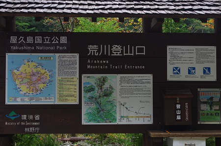 250屋久島