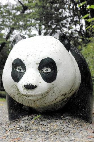 パンダ~1