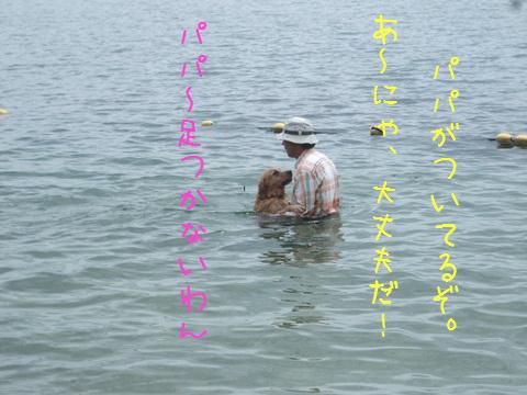 DSCF4031_20110820161218.jpg