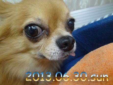 DSC03643_20130630123805.jpg