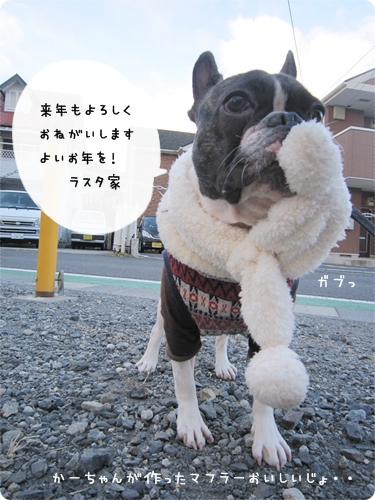IMG_6408-1.jpg