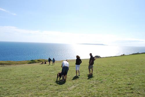 Dorset12.jpg