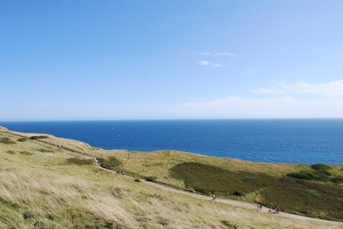 Dorset14.jpg