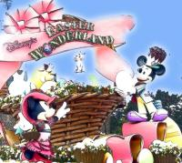 フォトロケミッキー&ミニー