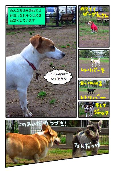 20100517-2.jpg