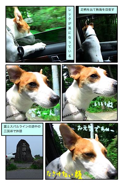 20100906-5.jpg