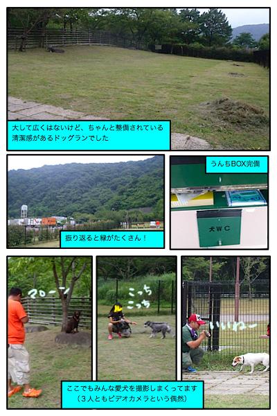 20110805-23.jpg