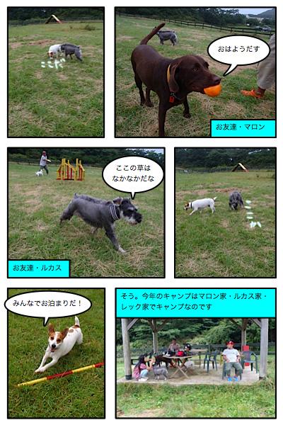 20110805-6.jpg