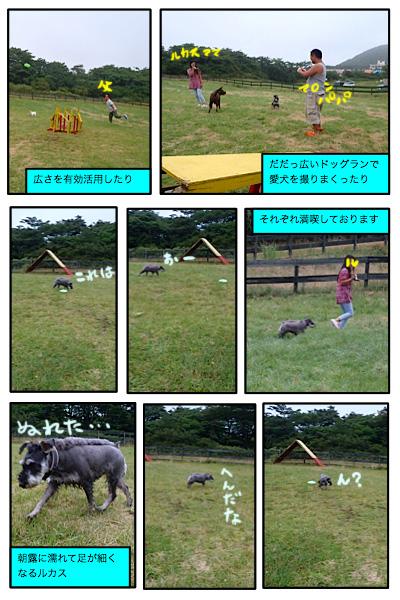 20110805-7.jpg