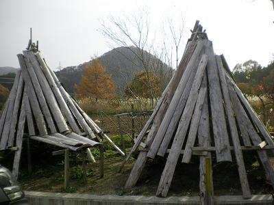 2010.11月 002