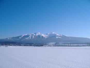 20110222yuza535m.jpg