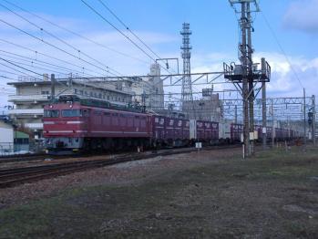 20110223rinnjikamotu8098.jpg