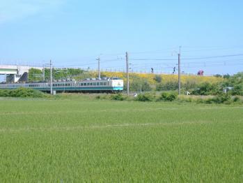 20110620inaho6gou.jpg