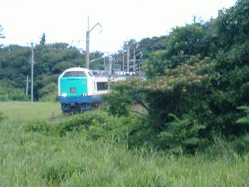 20110719inaho.jpg