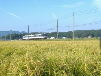 20110914murakamikiha47+47.jpg