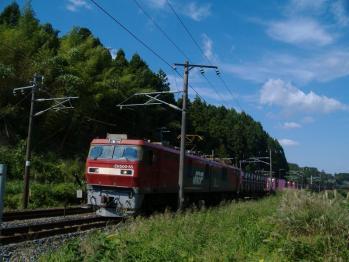 20110927sinainumaeh500-55.jpg