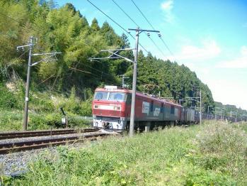 20110927sinainumaeh500-65.jpg