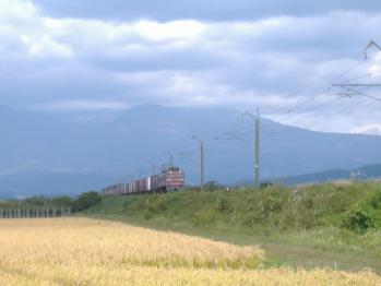 20111011mototate3098re.jpg