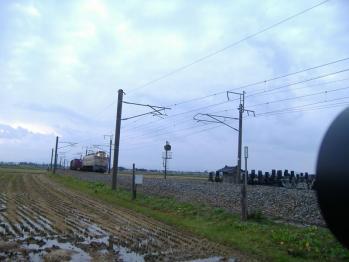 20111114amarume851re.jpg