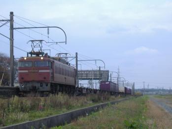 20111114higasisakata3098.jpg