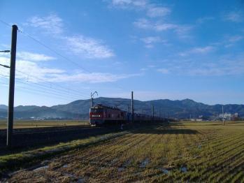 20111118sawada2093re.jpg